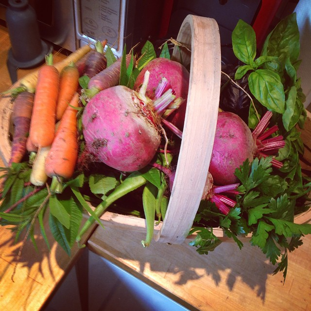 Beetroot and carrots can both have a long season with successional sowing